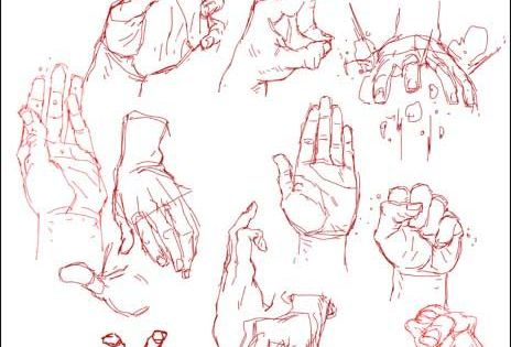 Character Design Study : Hand study by kizer viantart character design