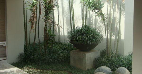 Fotos de jardines interiores peque os modelos de for Modelos de jardines interiores