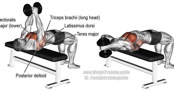 Dumbbell pullover. An isolation and push exercise. Target