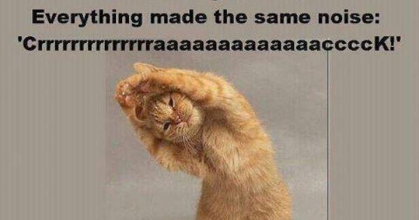 Smart kitty!