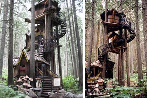 My dream house (tree house)