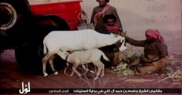 الشيخ جاسم بن حمد ال ثاني