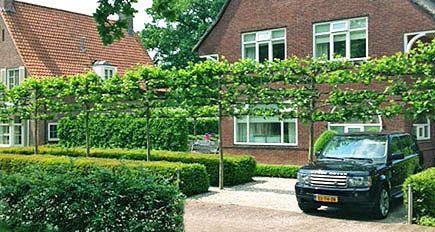 Tuinarchitect tuinontwerp moderne tuinarchitectuur strakke - Eigentijdse tuinarchitectuur ...