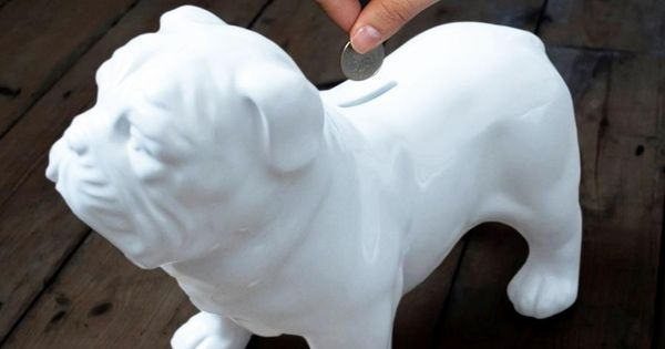 Ceramic Bulldog Coin Bank Guard Dogs Money Box Unique Gifts For Women