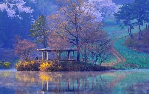Choongnam Seosan, South Korea! travel asia choongnamseosan southkorea korea