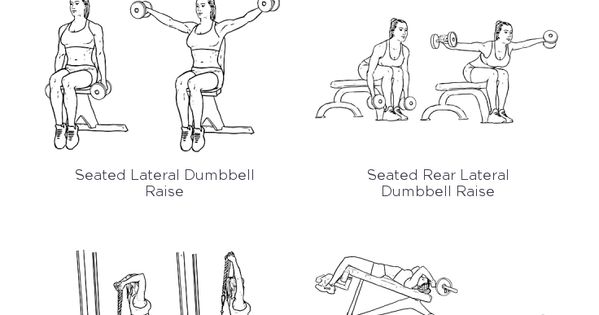 chest  shoulders  triceps     we u0026 39 re helping thousands of