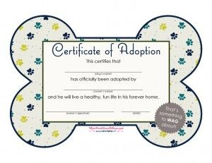 Certificate Of Adoption Boy Poochpawty Puppyparty Dogadoption