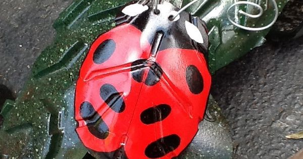 Recycled Tire Ladybug Sitting On O Tire Alligator Www