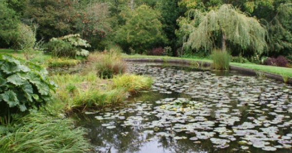 Soos Creek Botanical Garden In Auburn Wa Home Puget Sound Wa Pinterest Gardens