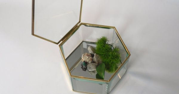 Vintage verre biseauté grand & laiton bijou souvenir Terrarium boîte ...