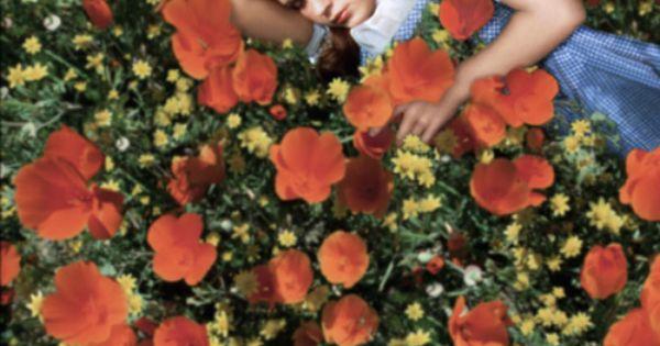 Dorothy In The Poppy Field Follow The Yellow Brick Road