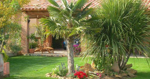 Decoracion de jardines con palmeras http for Decoraciones para jardines de casas