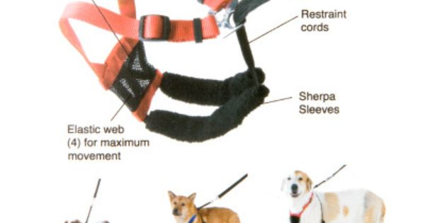 Dog Harnesses For Easier Training Petsmart Dog Harness Reflective Dog Harness Dog Collars Leashes
