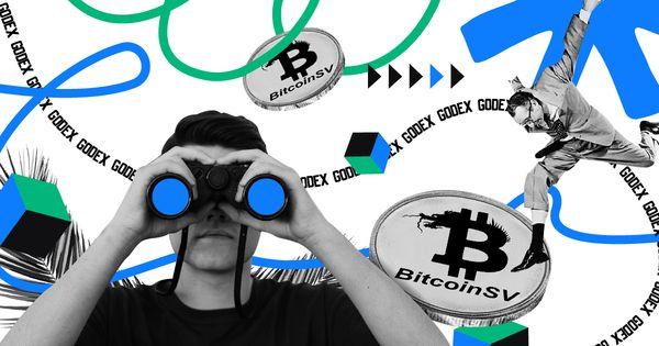 bitcoin satoshi vision price prediction opcionų prekybos platformos kanada