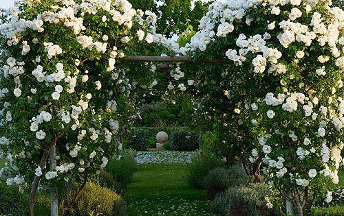 42377 jardins blancs jardin extraordinaire et jardins for Perspective jardin 78