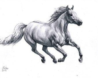 Horse Tattoo Horse Drawings Horses Horse Running Drawing