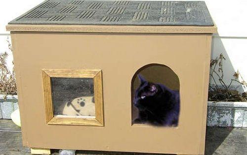 Pin De Eunice Canchola En домики для кошек Casa Del Gato Gatos Camas De Gato
