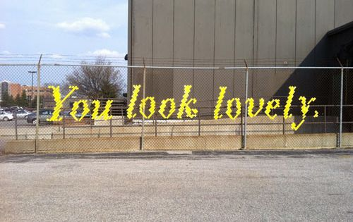 Typography fence art by Lambchop. The artist Lambchop weaves words into fences