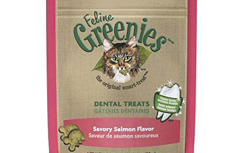 Feline Greenies Natural Dental Care Cat Treats Savory Salmon Flavor 2 5 Oz Pouch Natural Cat Treats Dental Treats Greenies