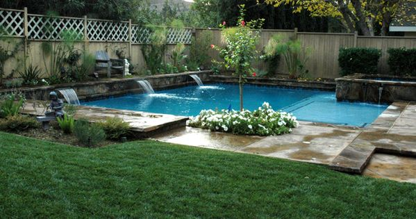 Image detail for design and construction best plants to use around swimming pools for for Best plants around swimming pool