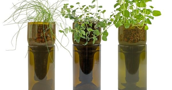 ... hydroponics SLOW Pinterest Bottle, Hydroponics and Countertop