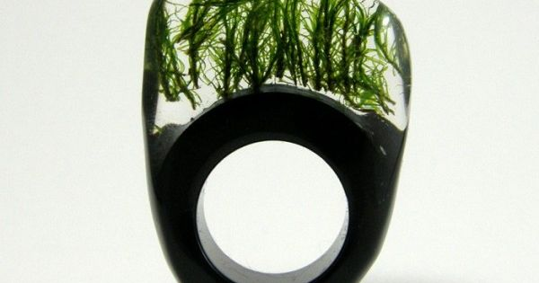 green ring by sylvia calus. this is so completely wonderful