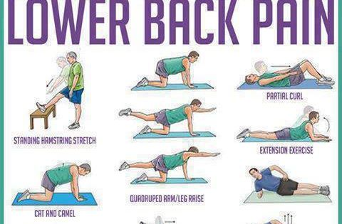 Lower Back Pain Exercises Pdf Stretch And Maintain