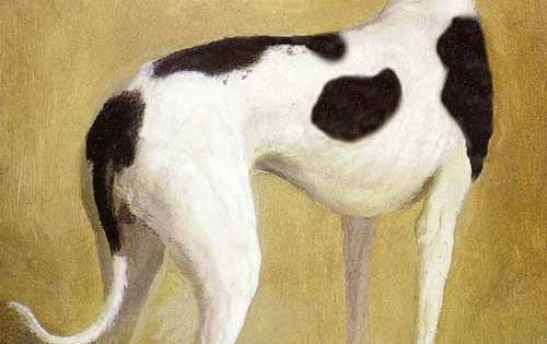Jacques Laurent Agasse Canine Art Dog Paintings Dog Art