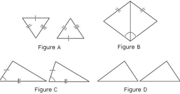 congruent triangles activity congruent triangles worksheet worksheets flora. Black Bedroom Furniture Sets. Home Design Ideas