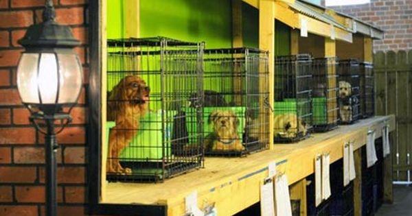 Atlanta Dog Boarding Doguroo Cheap Dog Kennels Luxury Dog Kennels Dog Boarding