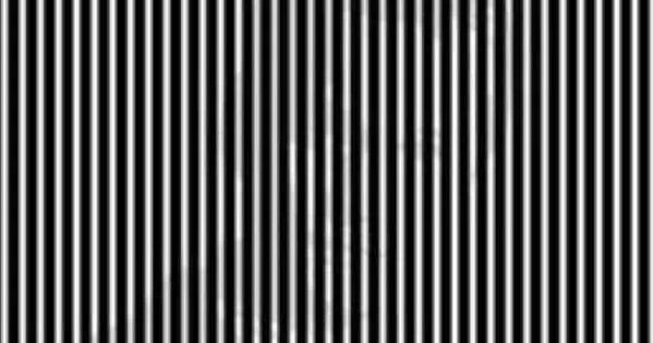 Optical Illusion You Could Also Just Squint Really Hard