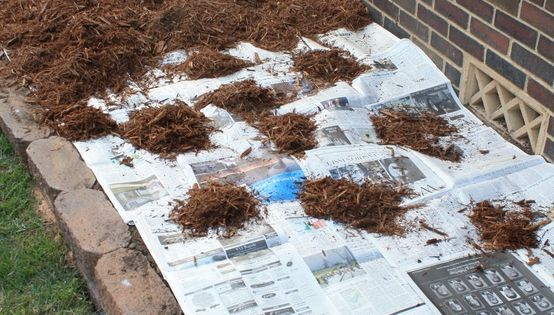 Genius idea to prevent weeds under wood chips. The newspaper will prevent