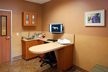 Veterinary Hospital Exam Room Con Imagenes Diseno De