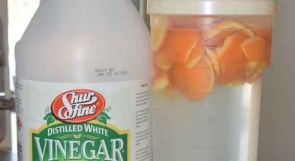 d sinfectant naturel pour le poulailler base de vinaigre blanc et zeste d 39 orange ou de citron. Black Bedroom Furniture Sets. Home Design Ideas