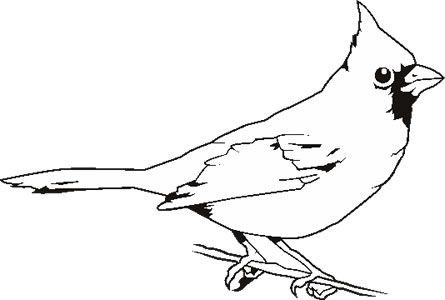Cardinal Clipart Black And White Google Search With Images