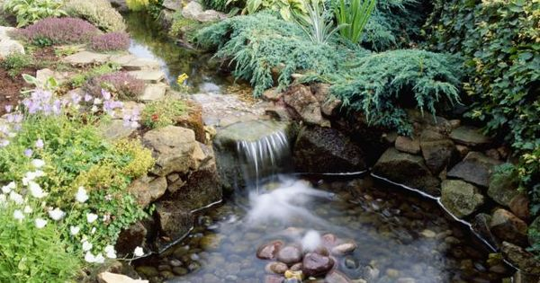 10 best garden pond building practices dammar vatten for Shallow koi pond