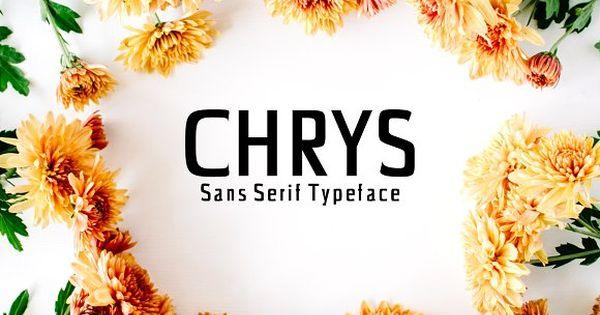 Chrys Sans Serif Typeface – minimal clean sans serif font family,