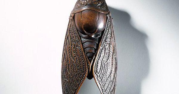 Cicada (locust) netsuke, carved wood, ca. 1800-1875 Japan.