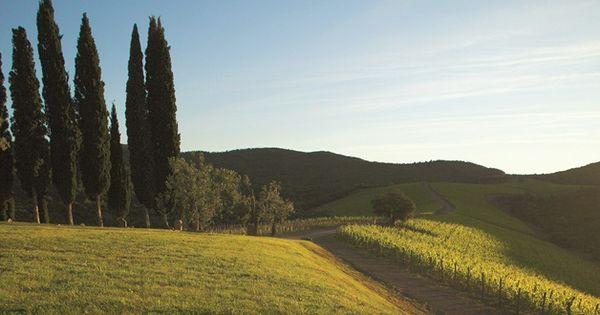travel massimo ferragamo tuscany italy tips
