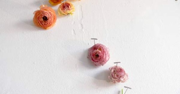 Pinned Flowers Flowers In The Attic Beautiful Flowers Flower Bomb