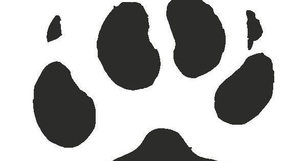 Coyote Paw Print Tracks Decals Stickers Liked On