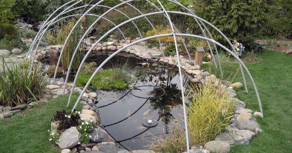 Winter Pond Covers Pond Covers Ponds Backyard Pond Landscaping