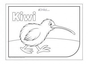 Kiwi Bird Colouring In Picture Kiwi Bird Kiwi Waitangi Day