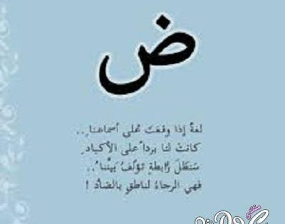 شعر نبطي قصيد ابيات قوافي عشق قافية غزل مدح كلمات خواطر بو ح Poetry Words Arabic Poetry Qoutes