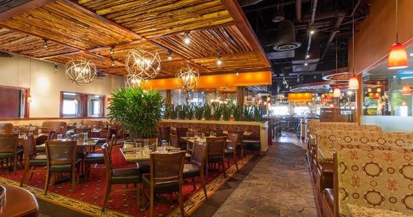 Agave 39 s bar and grill restaurant in north naples for Agave naples