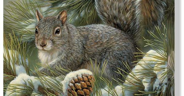 gray squirrel wrapped canvas art winter scenes wildlife