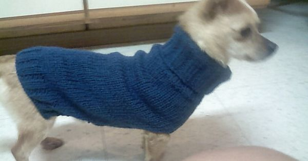 Free Super Easy Chihuahua Knit Sweater Pattern Dog Sweater