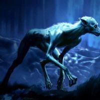 Werewolf Werewolf Magical Creatures Werewolf Art