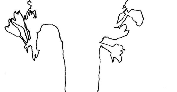 Blind Contour Line Drawing Definition : Dancers contour line drawing google search art ed