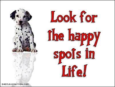 Dalmatian Quotes Google Search Dalmatian Life Happy